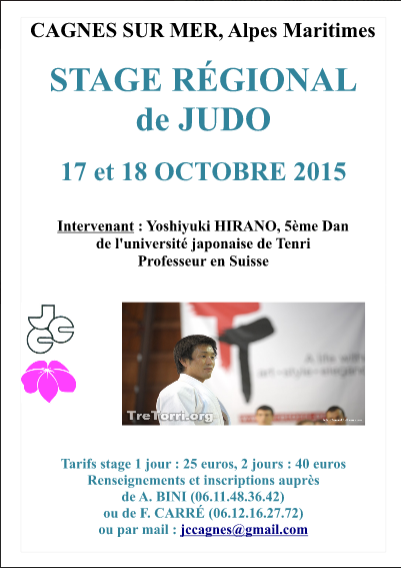 affiche_stage_hirano2015.png